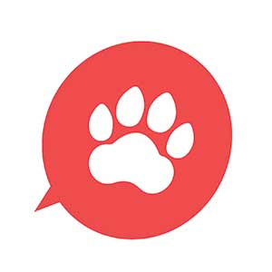Reviews of a UK based pet transport company